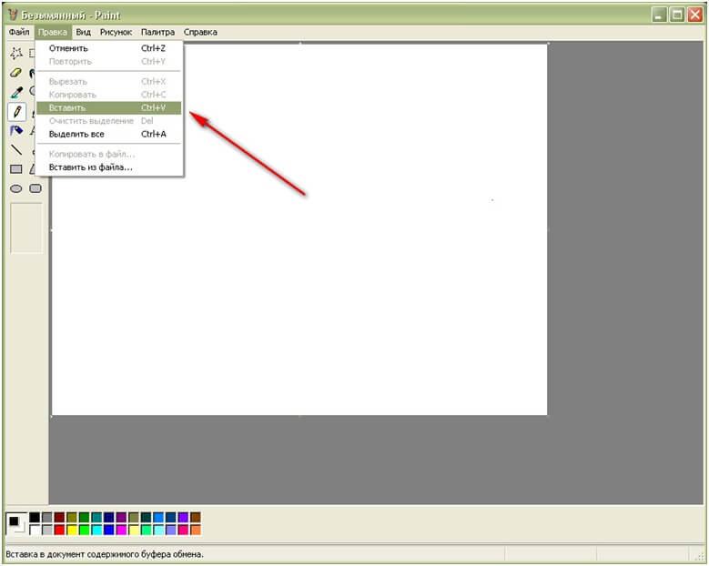 Как сделать скриншот в программе Paint